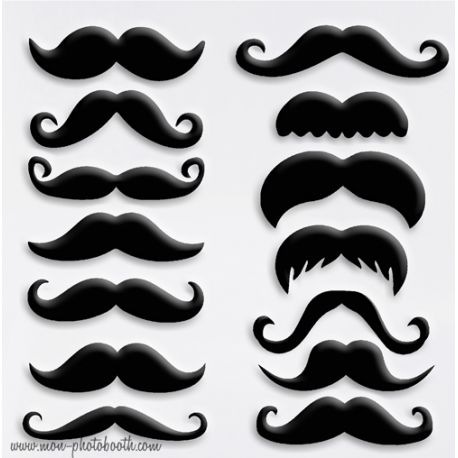 Lot de 14 Moustaches Chic Photobooth Accessoires