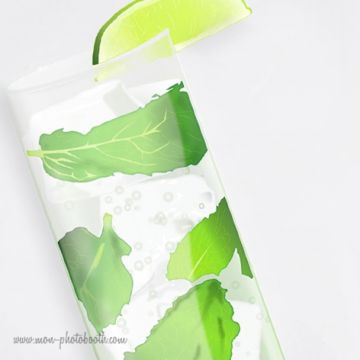 Mojitos Party Photobooth Accessoires