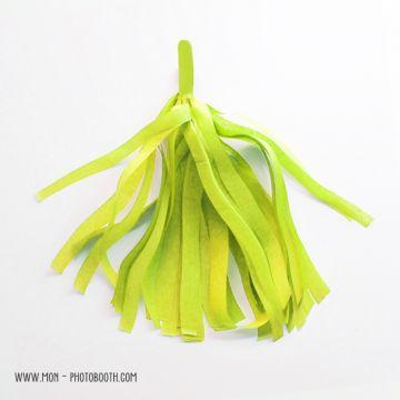 Pompon Franges Tassel - Vert Anis - Papier Soie pour Guirlande DIY